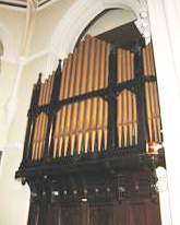 organ-original
